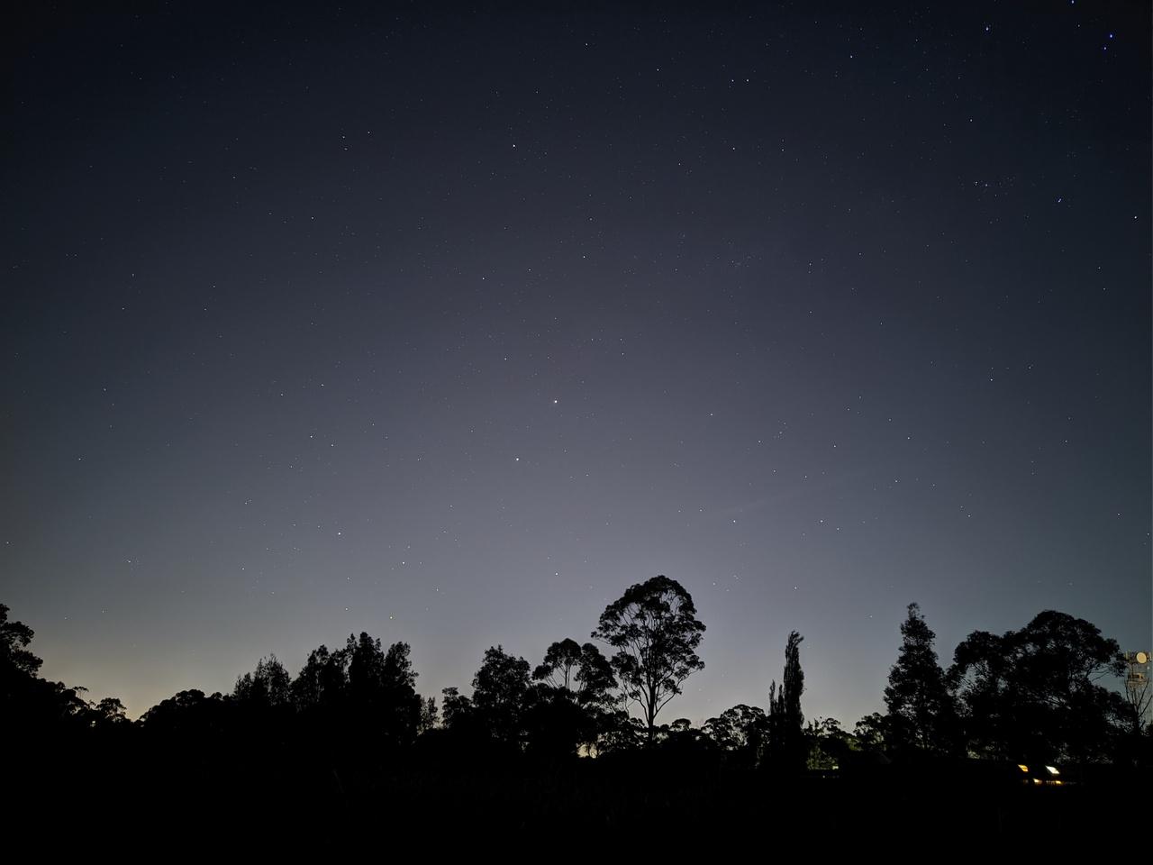 astro-treeline-tegan.jpg
