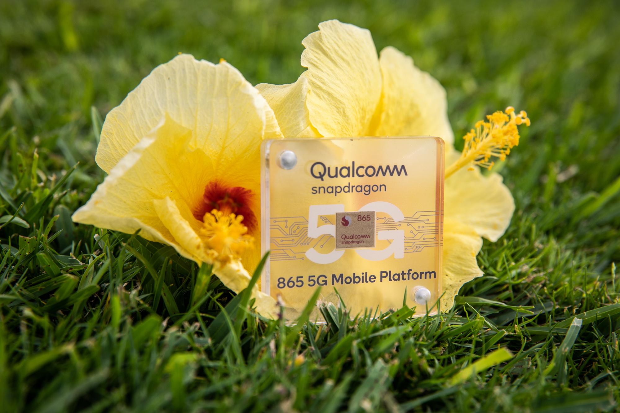 qualcomm-snapdragon-865-5g-mobile-platform-chip-case-outdoors-in-maui.jpg